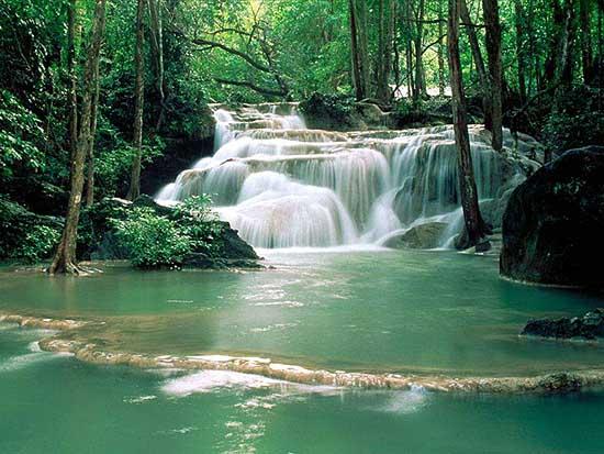 金鞭溪溪水